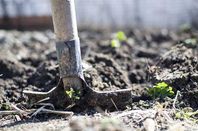 Die Bodenvorbereitung